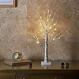 EAMBRITE Árbol de Luz LED 60cm Abedul 24LT Luz Blanca Cálida Funciona con Pilas, Soporte de Joyería, Decoración para Fiesta Casa Boda Hogar Navidad